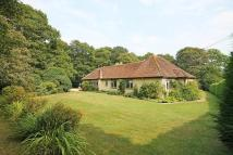 Detached Bungalow for sale in Kirdford, Billingshurst...