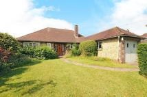 Detached Bungalow for sale in Fryern Road, Storrington...