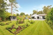 Detached Bungalow for sale in Bracken Lane...