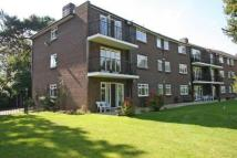FARNHAM Ground Flat to rent