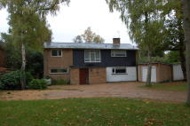4 bed Detached home to rent in GERRARDS CROSS