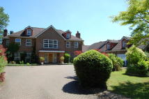Detached house to rent in Farnham Royal