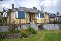 Detached Bungalow in BUCKFASTLEIGH