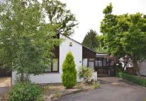 3 bed Detached Bungalow in DARTINGTON