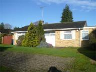 Detached Bungalow for sale in Henley-on-Thames...