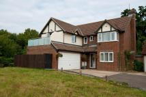 5 bed Detached property in UCKFIELD