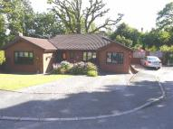 Detached Bungalow for sale in Oakwood Villas...