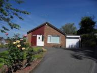3 bed Bungalow to rent in Wallis Close, MONMOUTH...