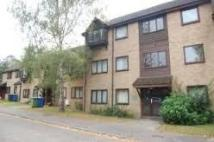 property to rent in Briar Court, Guardian Road, Norwich