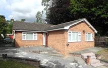 Detached Bungalow in London Road, Beccles