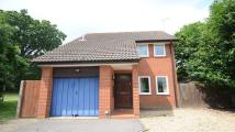 Detached house to rent in Elm Lane, Lower Earley
