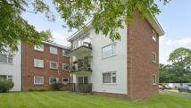 2 bed Apartment to rent in Copperdale Close, Earley