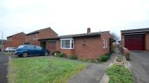 2 bed Bungalow to rent in Bridport Close...