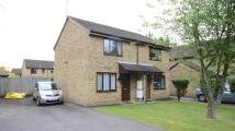 semi detached home in Sibson, Lower Earley