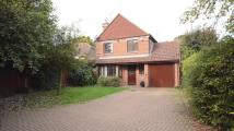 Winston Close Detached house to rent