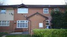 Cluster House to rent in Bottisham Close, Earley