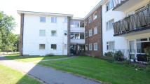 Flat in Leighton Court, Earley