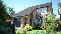 Hutton Close House Share