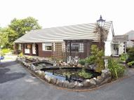 Detached Bungalow for sale in 8 Hafod Road, Tycroes...