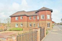 Martlet Court Flat to rent
