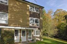 Flat to rent in Cotswold Court, Horsham...