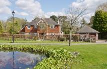 Detached property to rent in Rookwood Park, Amberley...