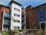 2 bed Flat to rent in Kingsgate, Horsham, RH12