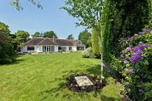 4 bed Detached Bungalow for sale in Lady Byron Lane, Knowle