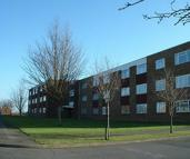 Flat to rent in Selwyn Court, Bedgrove...