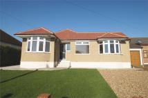 Detached Bungalow to rent in Albany Close, BEXLEY...