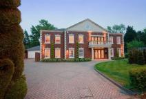 7 bedroom Detached property in Seymour Close...