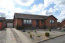 Palmer Lane Detached Bungalow for sale