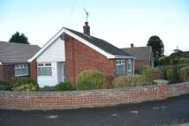 Detached Bungalow for sale in Saxon Close...