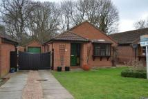 3 bed Detached Bungalow for sale in Palmer Lane...