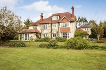 5 bed Equestrian Facility property in Passfield, Liphook...