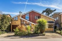 Detached house in Town Centre, Guildford