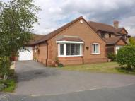 Detached Bungalow in Birchwood Close...