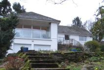 Detached Bungalow in Chestnut Hill, Keswick...