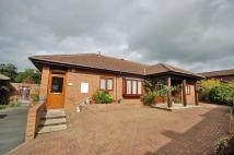 Detached Bungalow for sale in Talar Deg, Llanilar, SY23
