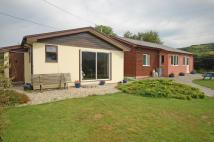 Detached property in Talybont, SY24