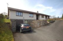 4 bed Detached Bungalow for sale in Talybont, SY24