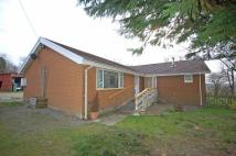 4 bedroom Detached Bungalow for sale in Rhosygarth, Llanilar...