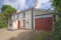 4 bedroom Detached house in Llangeitho, SY25