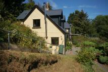 3 bed semi detached house for sale in CWMPADARN, Aberystwyth...