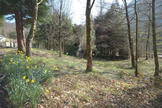 Plas plwca - garden.