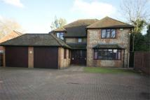 Robinhood Lane Detached house to rent