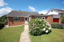 Detached Bungalow in Larch Close, Teignmouth