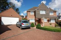 4 bedroom Detached property for sale in Pine Close, Teignmouth