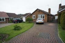 Detached Bungalow to rent in Celandine Close, Oakwood...