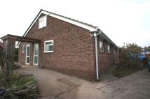 2 bedroom Bungalow to rent in Spring Gardens...